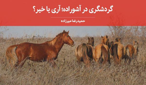 گردشگری در آشوراده؛ آری یا خیر؟