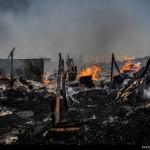 گزارش تصویری از آتشسوزی انبار چوب در تهران