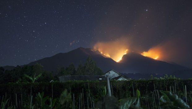 هزاران کیلومتر از اندونزی در آتش است و رسانههای جهان توجهی نمیکنند