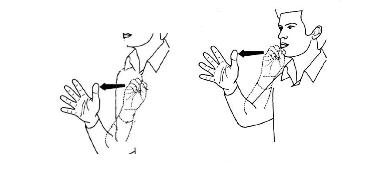 تصویر ۲، اشارات فحش (راست) و بدآمدن (چپ) تنها در محل ادای اشاره متفاوتند.