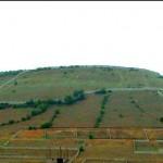 رئیس سازمان امور اراضی: خاک کشور در حال تاراج شدن است
