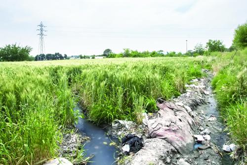 زندگی با آب چاه، کشاورزی با فاضلاب