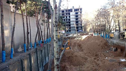 مخالفت شورای شهر تهران با طرح صیانت از باغات