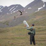 انتشار بزرگترین آرشیو صوتی جهان از طبیعت
