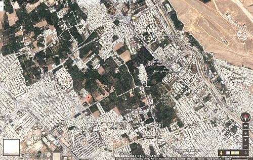 تغییر کاربری؛ بلای جان باغهای پردرخت شیراز