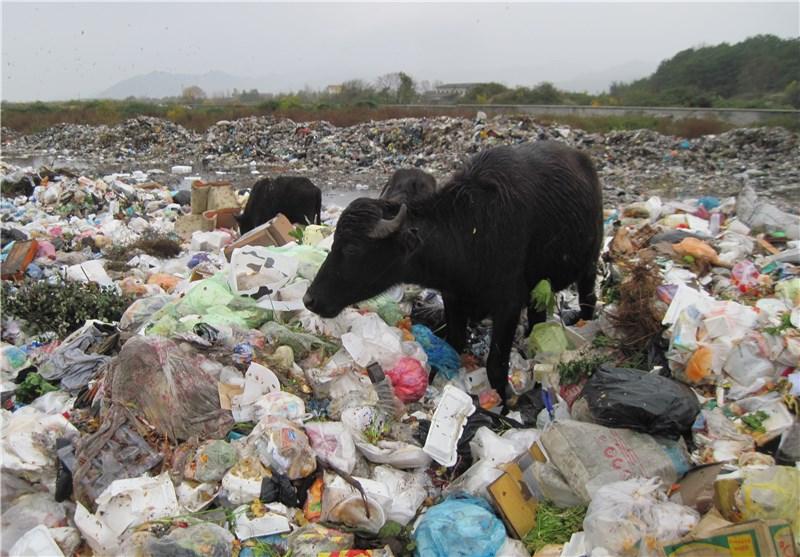 زنجیره انسانی مقابل کامیونهای دفن زباله در منطقه سراوان گیلان