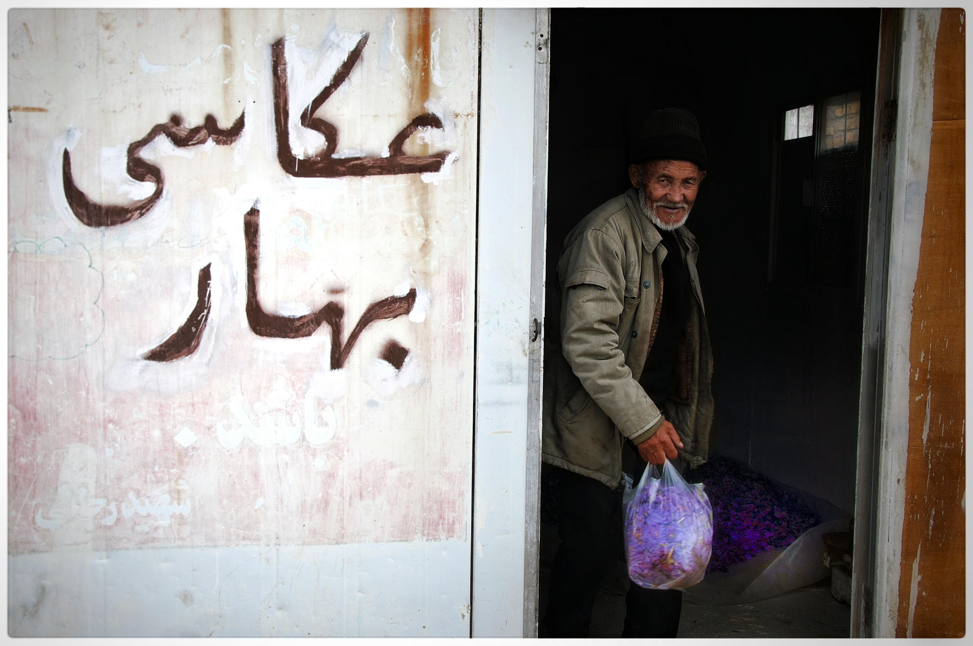 گل زعفران و اردوگاه مهاجران افغان در ایران