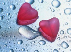 روانشناسیِ عشق و سکسوالیته