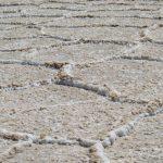 هشدار در مورد بیتوجهی دولت به نجات دریاچه ارومیه
