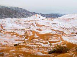 صحرای افریقا برای اولین بار در چهل سال گذشته سفیدپوش شد