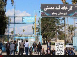 تجمع کارگران کاشی در یزد، ممسنی و قزوین