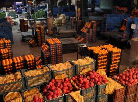 واردات از مصر و ترکیه، پوسیدن پرتقال ایرانی در انبارها