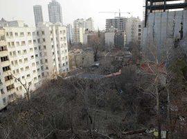باغکشی در پایتخت