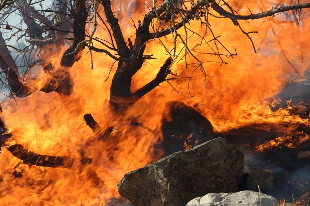افزایش ۱۰برابری آتشسوزی منابع طبیعی خوزستان در سال جاری