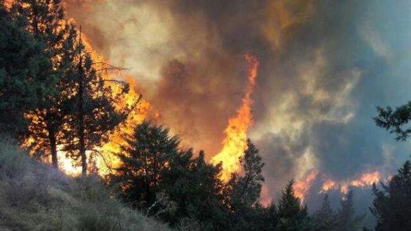 گسترش آتشسوزی در پارک ملی گلستان