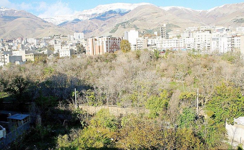 ساختوساز بدون مجوز در باغهای تهران