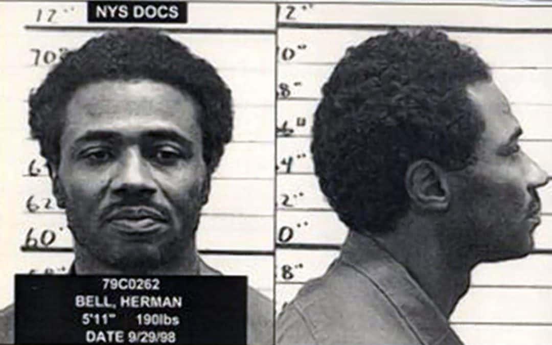 قاضی نیویورک حکم آزادی عضو پلنگهای سیاه را معلق کرد