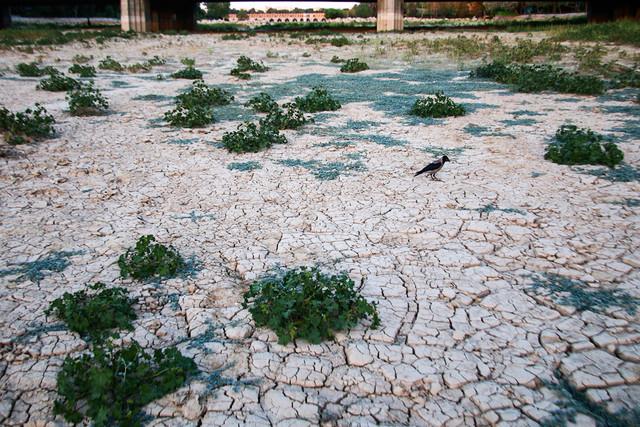 اگر میزان بارش کنونی افزایش نیابد آب شرب جمعیت پنج میلیونی اصفهان به خطر میافتد