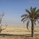 ۹۷ درصد مساحت ایران دچار خشکسالی ده ساله است