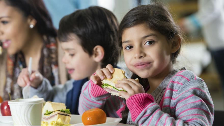 فرانسویها مشکل تأمین مواد غذایی دارندزمان مطالعه: ۱ دقیقه
