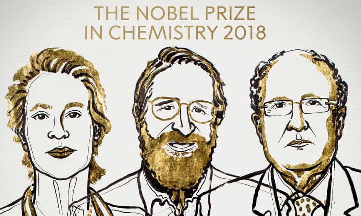 برندگان نوبل شیمی روی چه چیزی کار کرده بودند؟