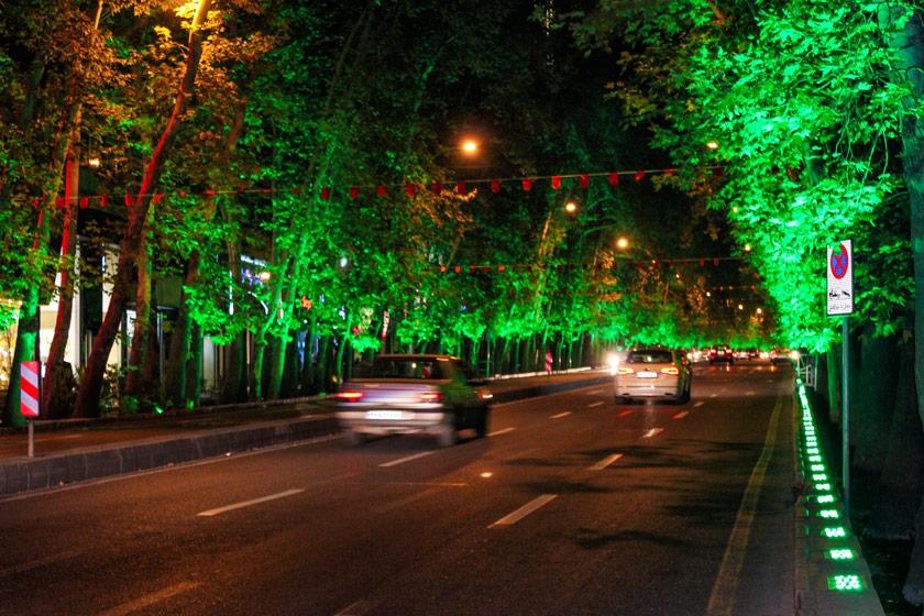 نورپردازی رفتهرفته درختان ولیعصر را خواهد کشت