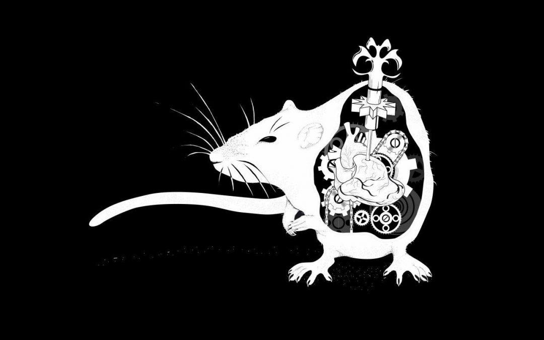 موش سایبورگی در کنترل انسانزمان مطالعه: ۲ دقیقه