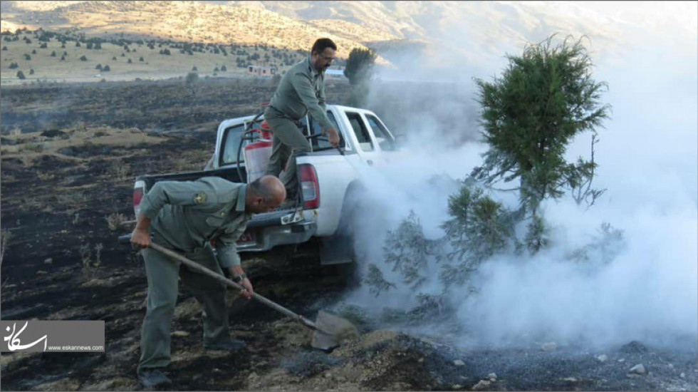جنگلهای جهانی هیرکانی با آتشسوزی آب رفت