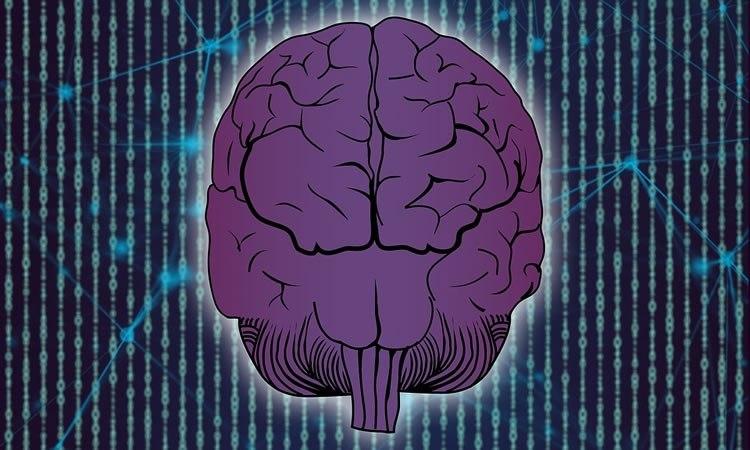 چگونه مغزپژوهی به کمک مبارزات اجتماعی زنان میآید؟