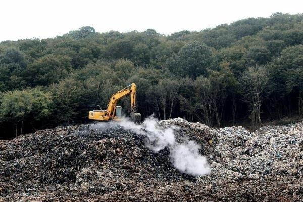زیستن در جوار جنگل مسموم