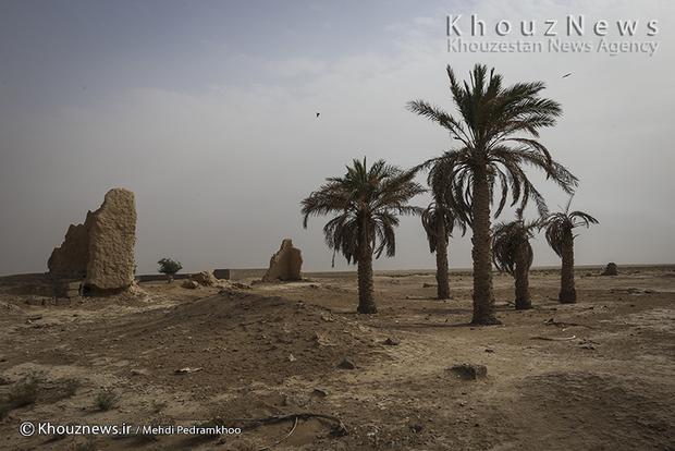 مالچپاشی در خوزستان متوقف شد