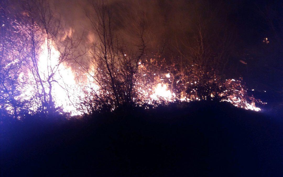 جنگلهای رودبار و سیاهکل همچنان در آتش میسوزند