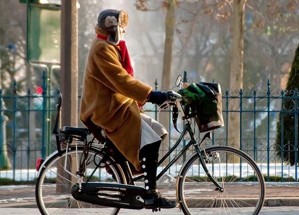 دوچرخه «دستمال توالت جدید» است