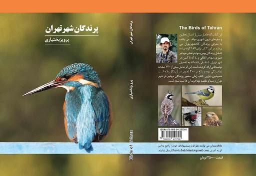 شرح عکس: پرویز بختیاری در کتاب «پرندگان شهر تهران» ۱۷۸ گونه از پرندگان مشاهده شده در تهران را معرفی کرده است.