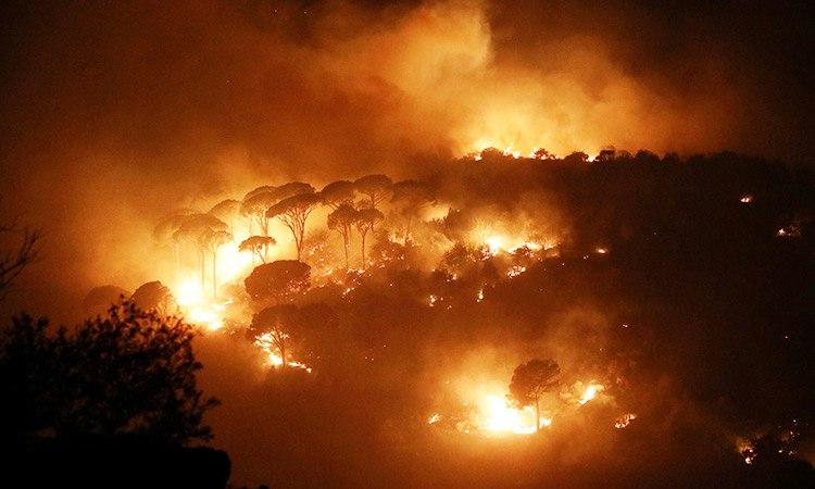 آتشسوزی جنگلهای لبنان و سوریه