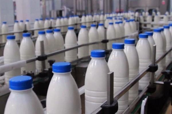 مصرف محصولات لبنی ۵۰ درصد کاهش یافته است