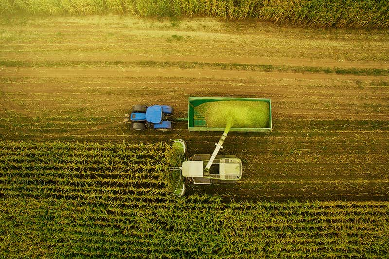 تولید غذا به تنهایی دمای زمین را از ۱/۵ درجه سانتیگراد بالاتر میبرد