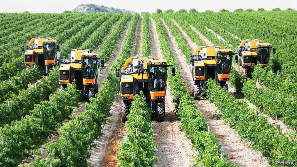 کسبوکار کشاورزی جان میلیونها انسان را به خطر میاندازد