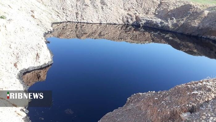 آلودگیهای نفتی در خوزستان موجب مرگ دامها و پرندگان میشود
