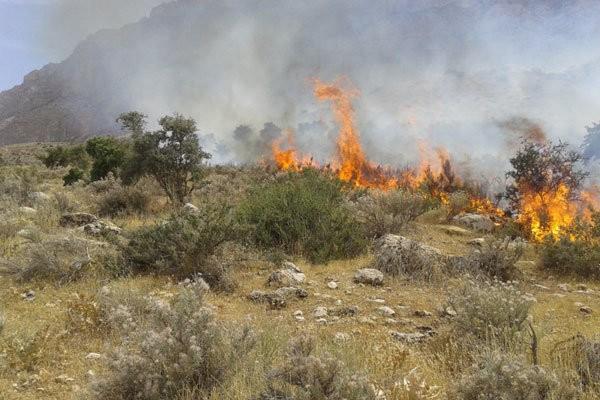 ۳۷ آتشسوزی در گلستان طی یکهفته