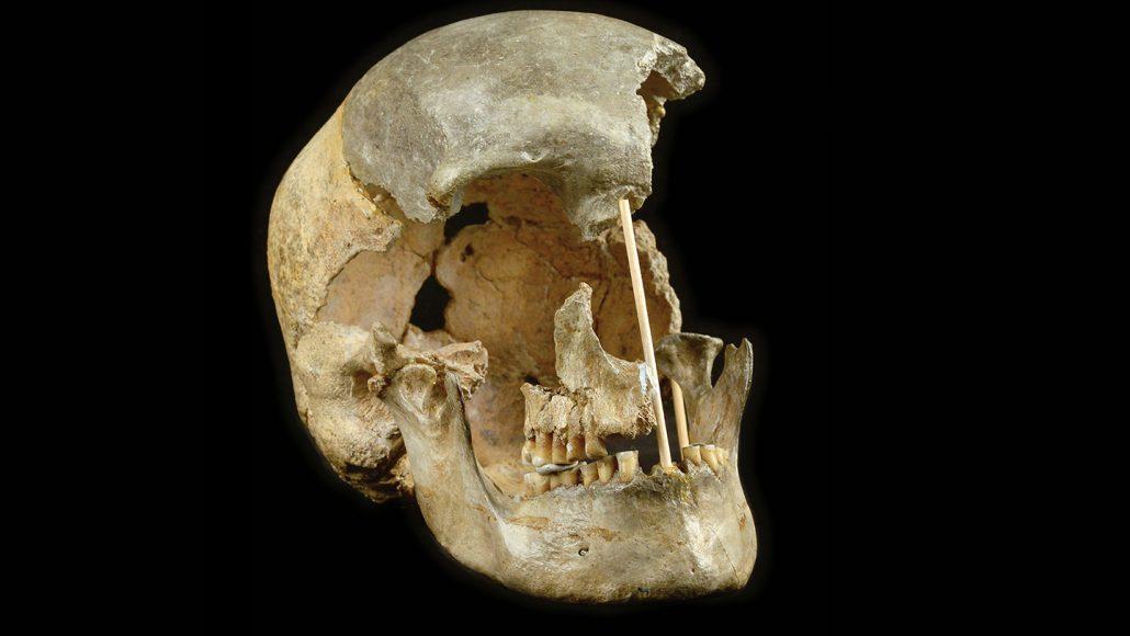 آمیزش گسترده انسانهای نخستین در اروپا و نئاندرتالها