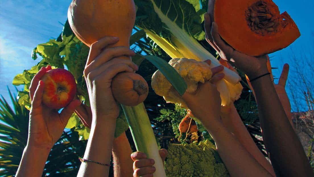 غذا به مثابه جنبش اجتماعی
