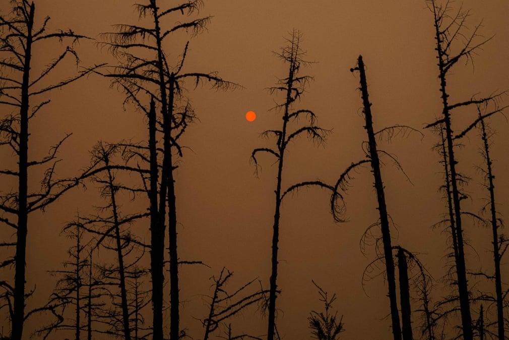گزارش تصویری از آتشسوزیهای اخیر در جهان