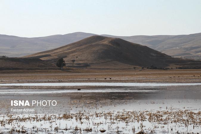 تالاب بینالمللی قوریگل در خطر خشک شدن