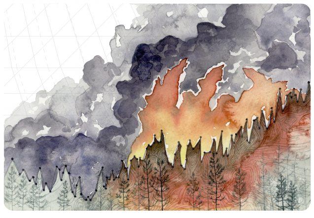 نقدی بر ساختار شبکه تشکلهای محیط زیستی سراسر کشور
